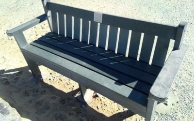 Procedure – park benches in public spaces